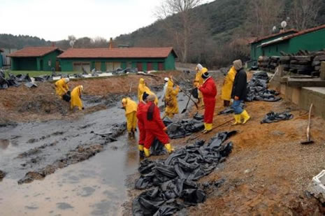 Kilyos'ta biyolojik kirlilik 20 yıl sürecek  galerisi resim 1