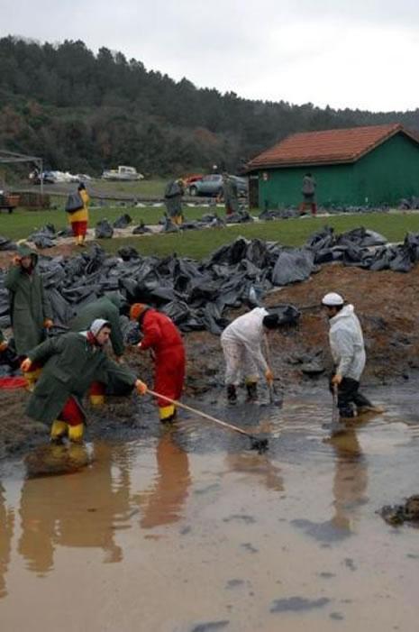 Kilyos'ta biyolojik kirlilik 20 yıl sürecek  galerisi resim 15