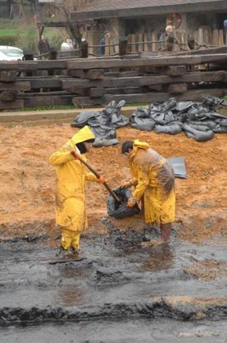 Kilyos'ta biyolojik kirlilik 20 yıl sürecek  galerisi resim 23