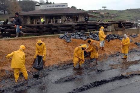 Kilyos'ta biyolojik kirlilik 20 yıl sürecek  galerisi resim 25