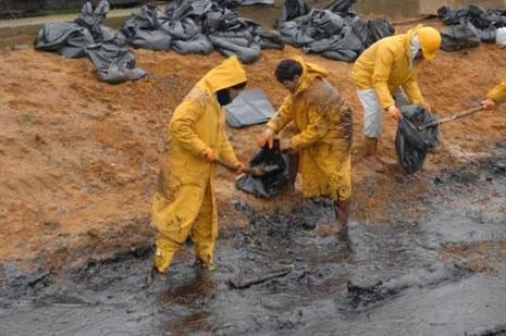 Kilyos'ta biyolojik kirlilik 20 yıl sürecek  galerisi resim 26