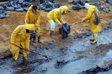 Kilyos'ta biyolojik kirlilik 20 yıl sürecek  galerisi resim 27