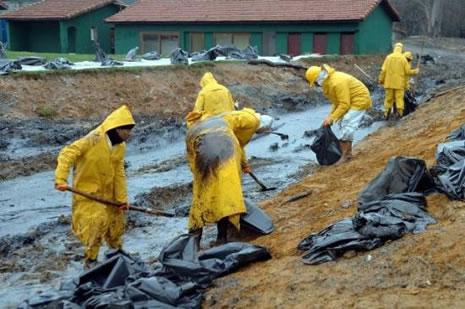 Kilyos'ta biyolojik kirlilik 20 yıl sürecek  galerisi resim 3