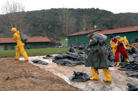 Kilyos'ta biyolojik kirlilik 20 yıl sürecek  galerisi resim 5