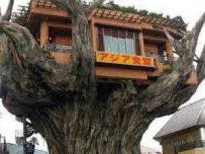 İlginç ağaç evler