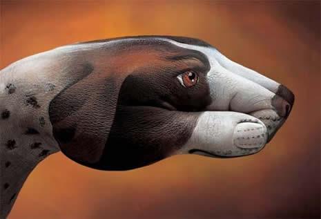Boyalı ellerin görsel şöleni galerisi resim 16