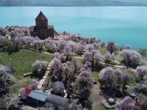 Ziyaretçisiz kalan Akdamar Adası badem çiçekleri ile görsel bir güzellik