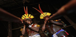 Yawalapiti kabilesi