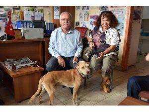 Belediye Başkanının hayvan sevgisi