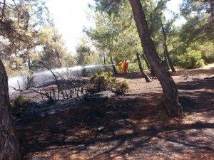 Arsuz'da çıkan orman yangını söndürüldü