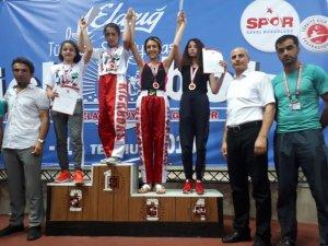 Tuncelili Kick Boksçulardan Türkiye dereceleri