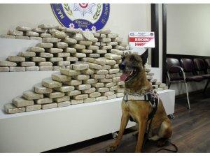 Kocaeli'de son bir yılda 3 tona yakın uyuşturucu ele geçirildi