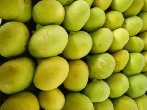 Taze incirin ihracat yolculuğu başladı