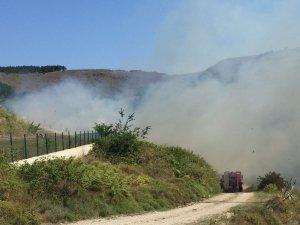 Sinop'ta yangında 1 hektarlık alan zarar gördü