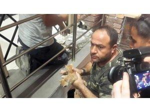 Ölüme terk edilen kediler kurtarıldı