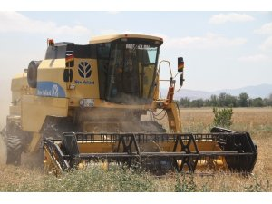 Elazığ'da 1 milyon dekar alanda hububat hasadı