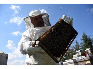 Arı yetiştiricilerine duyuru