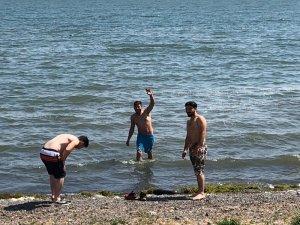 Sıcaktan bunalan Ardahanlılar, Çıldır gölünde serinliyor