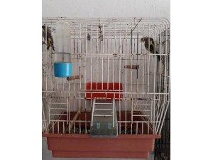 Saka kuşlarını satana 2 bin 190 lira para cezası