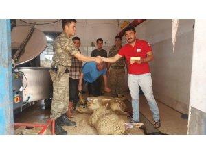 """""""Çöl tilkileri"""", Kızılay'a adak kurban bağışında bulundu"""