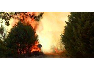 İzmir'deki yangın gökyüzünü dumanla kapladı