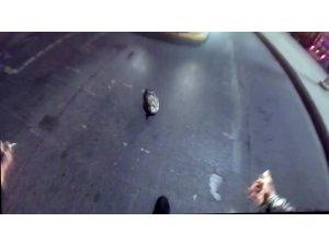 Motosikletli genç trafiği durdurup yaralı martıyı ceketiyle aldı