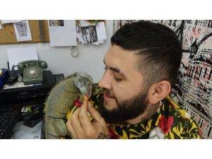 İş yerinde beslenen iguana ilgi odağı oldu