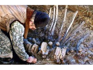 Yakutistan'da mamut fosili bulundu