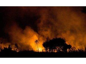 İznik'te sazlık alanda çıkan yangın korkuttu