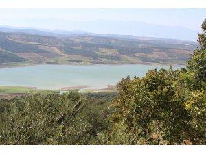 Yarseli Göleti'nde su seviyesi düşüyor