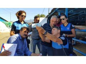 Bursa polisinden hayvan pazarı çıkarması