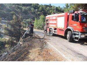 Aydın'da piknik ateşi yangına sebep oldu