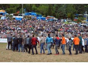 Boğa güreşleri Türkiye şampiyonu belli oldu