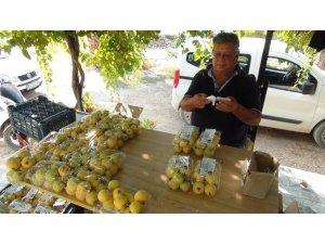 Türkiye'nin ilk guava üreticisi