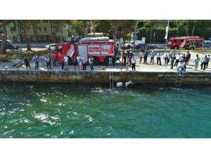 Sariyer'de denize düşen atın kurtarılma anı havadan görüntülendi