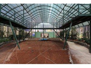 Nesli tüketen kelebekler için Gaziantep'te tropik merkez yapılıyor