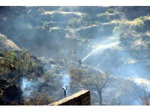 Talas'ta ot yangını
