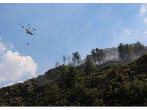 Manisa Spil Dağında orman yangını