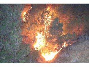 Sivas'taki orman yangını kontrol altına alındı