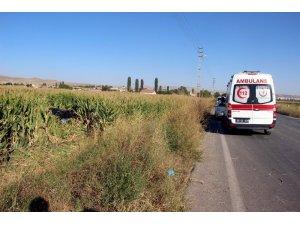 Otomobil mısır tarlasına uçtu: 2 yaralı