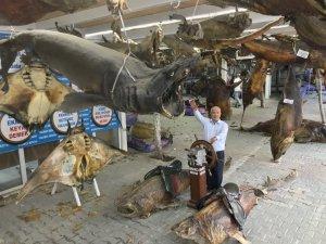41 tonluk Balık Müzesi kışa hazır