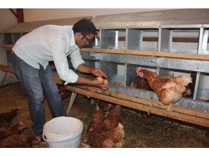Medyada haberlerini gördü, devlet desteğiyle çiftlik kurdu