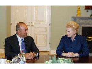 Dışişleri Bakanı Çavuşoğlu Litvanya'da