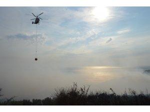 Erdek'teki orman yangını kontrol altına alındı