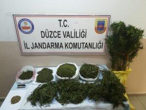 Düzce'de jandarmadan uyuşturucu operasyonu