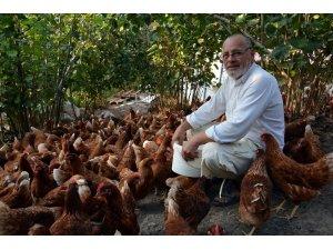 7 yıl önce 60 tavukla başladı, şimdi parmakla gösteriliyor