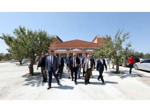 Vali Zorluoğlu Fidanlık Parkı'nda incelemelerde bulundu