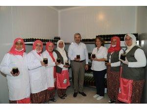 Başkan Çelik, Kadın Çiftçiler Ekolojik Eğitim ve Üretim Merkezi'ni ziyaret etti