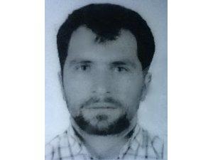 Ceviz ağacından düşen inşaat işçisi öldü