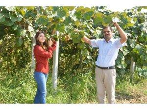 Genç çiftçilerin yolunu açacak olan proje faaliyete geçiyor